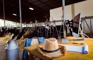 Munkaerőhiány a mezőgazdaságban